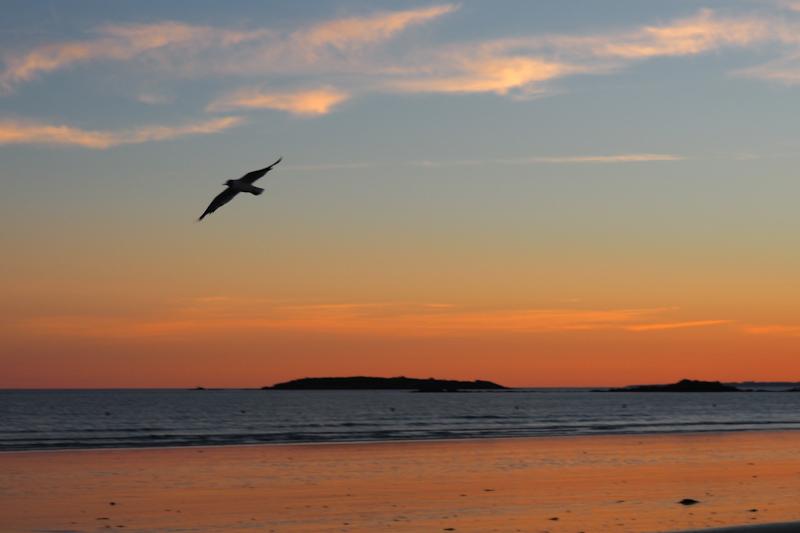 sunset - coucher de soleil Eredeven