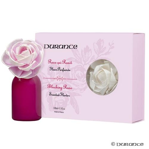 rose-qui-rosit-fleur-parfumee-large