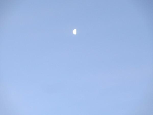 2012.4-0542.JPG
