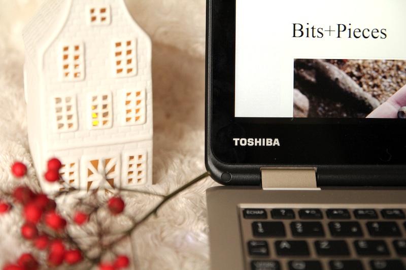 Toshiba_satellite_radius2