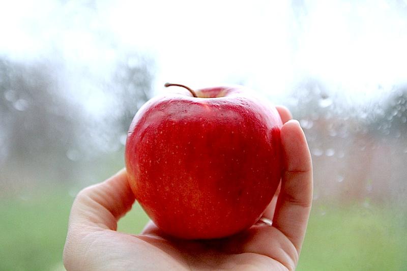 Conte de Noël : La Pomme de Merlin